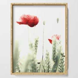 Poppy Poppies Mohn Mohnblume Serving Tray