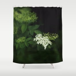 A bunch of lonesome flowers Shower Curtain
