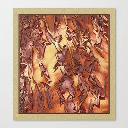 A STUDY OF MADRONA BARK Canvas Print