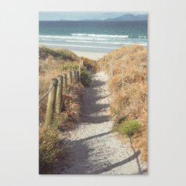 Pathway to Mangawhai Heads Beach Canvas Print