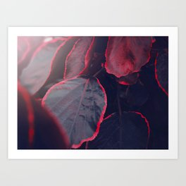 Sensual Red & Dark Purple Leaves Abstract Photography Patterns In Nature Art Print
