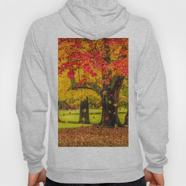 Autumn City Park Scene Hoody