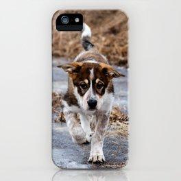 Brian iPhone Case