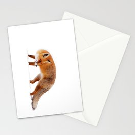 Fire 'n Ice Stationery Cards