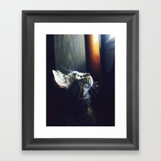 flight envy Framed Art Print