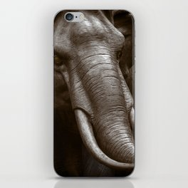 Raging Bull iPhone Skin