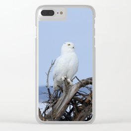 His Highness Clear iPhone Case