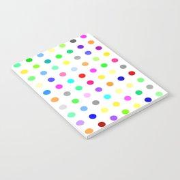 Zolpidem Notebook