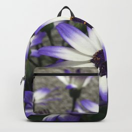 DAY DREAMS Backpack