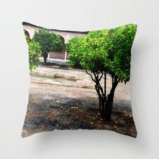 Courtyard Throw Pillow