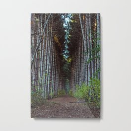 Man Made Forest Metal Print