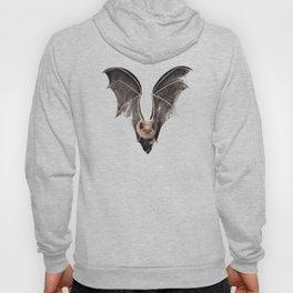 Long Tailed Bat / Pekapeka Hoody