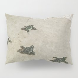 The Journey Begins by Teresa Thompson Pillow Sham
