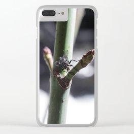 Fly, Battle Creek Falls Clear iPhone Case