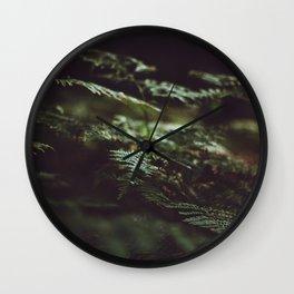 Fern in the shadow Wall Clock