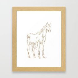 horse sketch Framed Art Print