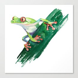 Frog. Watercolor illustration. Hand drawing Canvas Print