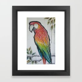 scarlett red macaw Framed Art Print
