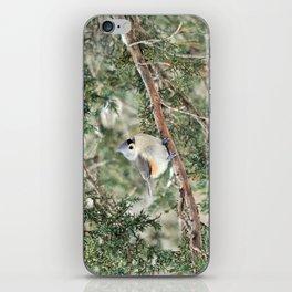 Tiny Titmouse iPhone Skin