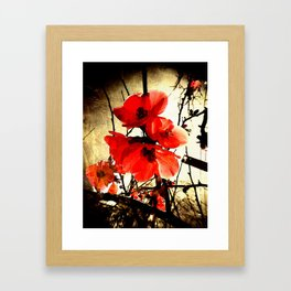 Spring Red 3, Royal Botanical Gardens - Melbourne Framed Art Print