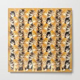 Kittywall Metal Print