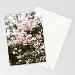 Crape Myrtle in New Orleans Stationery Cards
