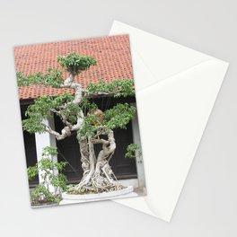 Old Bonsai Pine Tree, Hanoi, Vietnam Stationery Cards
