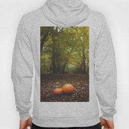 Family Pumpkin Hoody