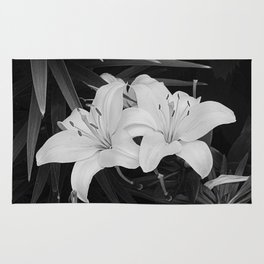 Contemporary Black White Lily Flower Floral Art A116 Rug