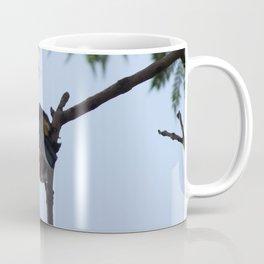 A bird hidden in the open Coffee Mug