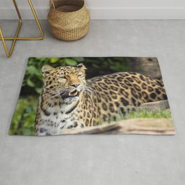 Amur Leopard Rug