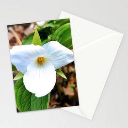 White Trillium 1 Stationery Cards