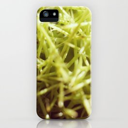 Horse Chestnut seed spikes iPhone Case