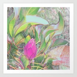 Protea Sketching in Bright Lights Art Print