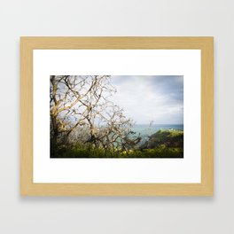 Irish cliffs Framed Art Print