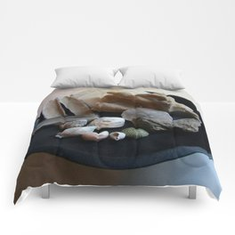 Beach Curiosity Collection Display Comforters