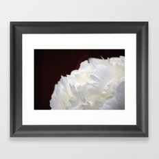 Peony Close Up Framed Art Print