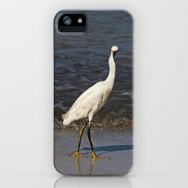 Here's Lookin' at Ya iPhone Case