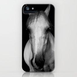 Horse in the Dark iPhone Case