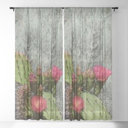 Cacti in Bloom - 3 Sheer Curtain