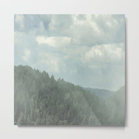 forest 786 Metal Print