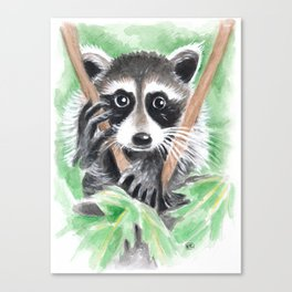 El Bandito Raccoon In The Tree Canvas Print