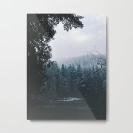 Winter Hiking Metal Print