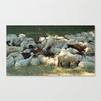 sheep Canvas Prints featuring Sheep by Vlad&Lyubov
