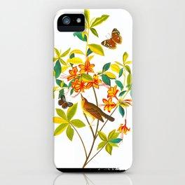 Vintage Floral Illustration iPhone Case