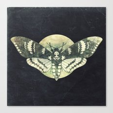 Moth And Moon Canvas Print