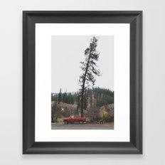 Tree Truck Framed Art Print