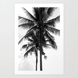 Tropical Darkroom #141 Art Print
