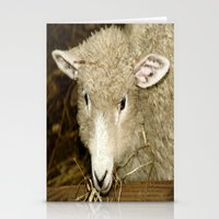 lamb Stationery Cards featuring Lamb by Raymond Earley