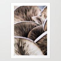 mushrooms Art Prints featuring Mushrooms by Kathy Dewar